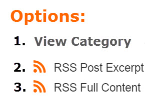 RSS Feed Options News-Wire.com